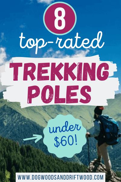 top-rated trekking poles