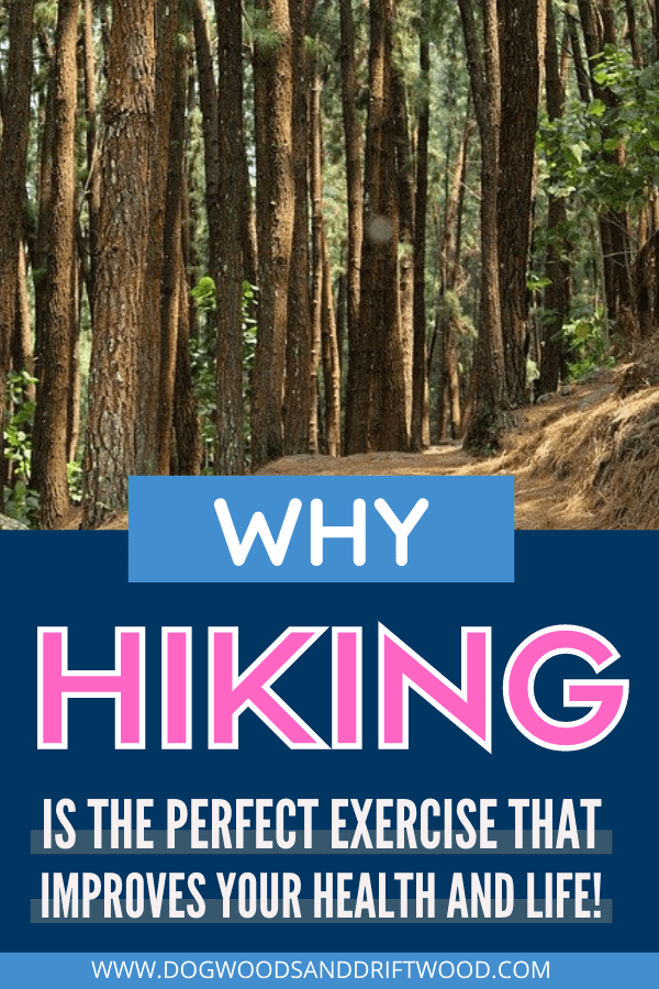 hiking for fitness perfect exercise