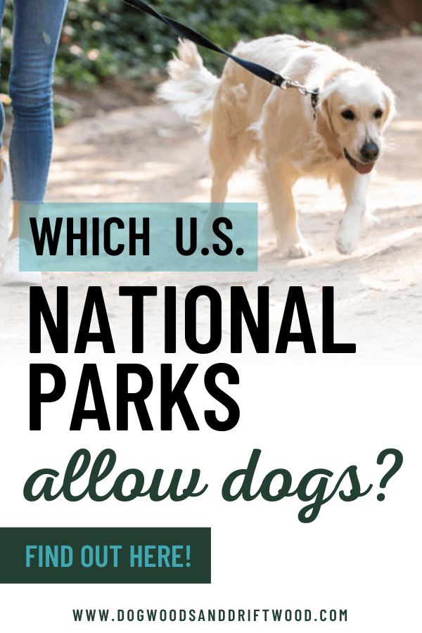 which national parks allow dogs?