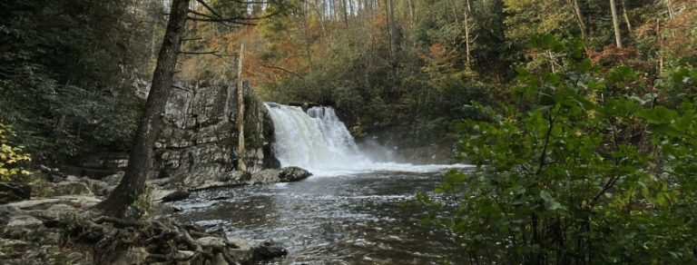 The Abrams Falls Trail (Great Smoky Mountains National Park)